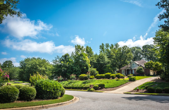 Moore's Mill Landscaping