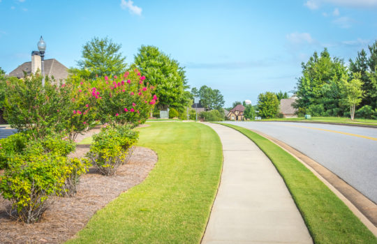 Asheton Lakes Landscaping