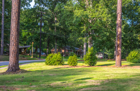 Cary Woods Landscape